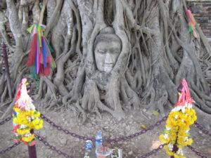 ICAIMA Massage bien-être Thai 'Nuad Bo ran'